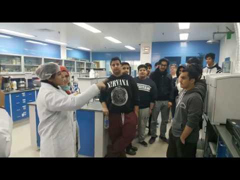 Baixar Kuwait international laboratory LABCO - Download