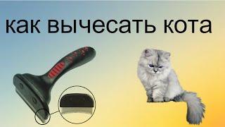 💆💆Как справиться с постоянной линькой у кота #фурминатор Без стрижки!