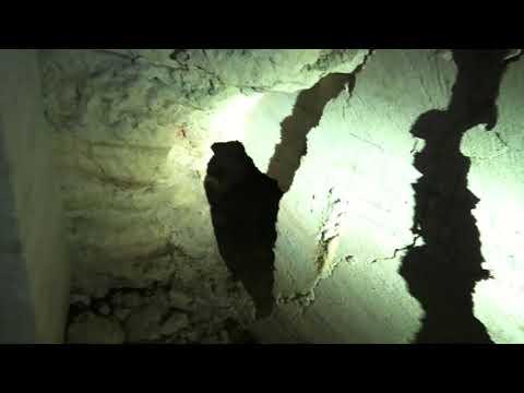 """30 метров под землей. Катакомбы. Одесса. Тайны подземной жизни. Лабиринт. Подземный город. """"Память""""."""