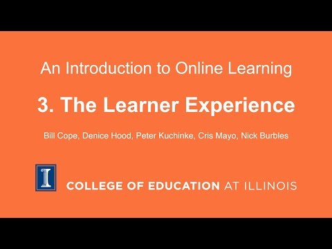 3. The Learner Experience
