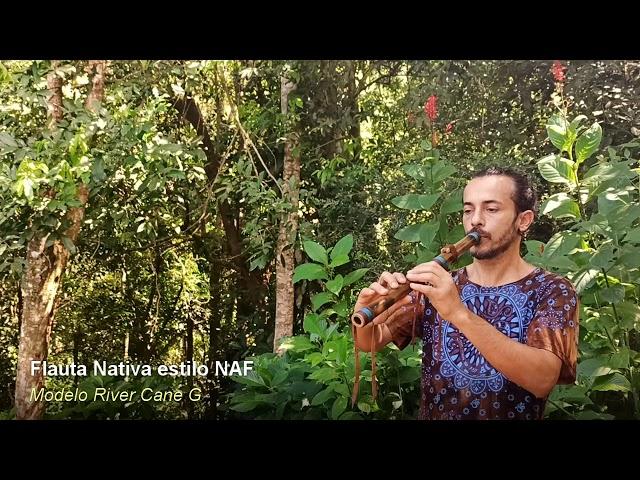 Flauta nativa estilo NAF - River Cane G