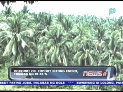 Coconut oil export nitong Enero, tumaas ng 81.36%