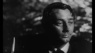 Die Nacht des Jägers (1955)