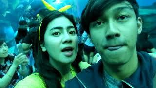 FELICYA ANGELLISTA #VLOG - KETEMU NEMO&DORI DI SINGAPORE!