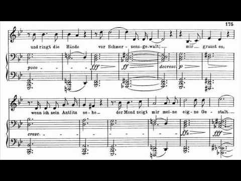 Dietrich Fischer-Dieskau sings Schubert 'Schwanengesang' - 13. Der Doppelgänger