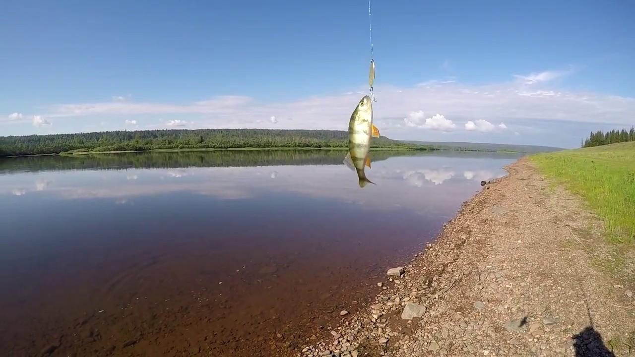 Рыбалка на река чуна