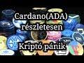 Cardano(ADA) részletesen, Kriptó pánik miértek.
