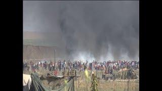 הפגנה מהומות גדר המערכת רצועת עזה פלסטינים אלימות צה