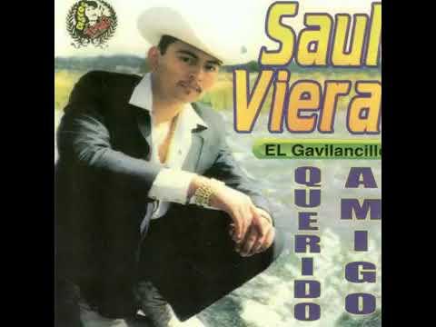 Saul Viera - Querido Amigo