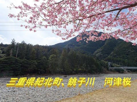三重県の二級水系一覧