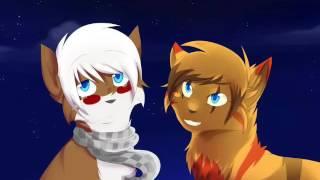 Картинки коты воители