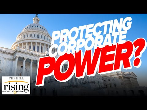 Author EXPOSES Bipartisan Consensus On Protecting Corporate