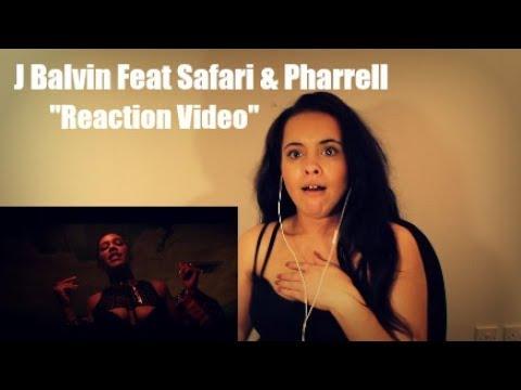 J Balvin - Safari ft. Pharrell Williams, BIA, Sky reation video