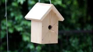 Tyler's Bird House