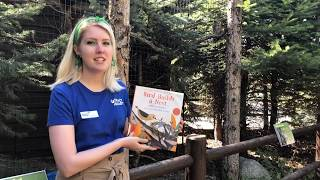 "Storytime with Tracy Aviary: ""Bird Builds a Nest"" by Martin Jenkins"