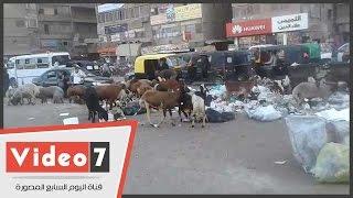 انتشار القمامة بمنطقة ارض اللواء وسط تجاهل مسئولى الحى