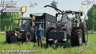 New vehicles & grass silage harvest   Animals on Stappenbach   Farming Simulator 19   Episode 14