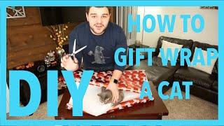 Vinny Duke Diy: How To Gift Wrap A Cat