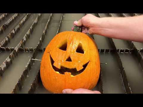 Kürbis schneiden mal anders - Pumpkin Carving Machine