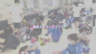福岡 スイミング クラブ