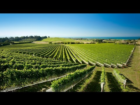 Hawke's Bay - Discover it now - Best Activities & Accommodation