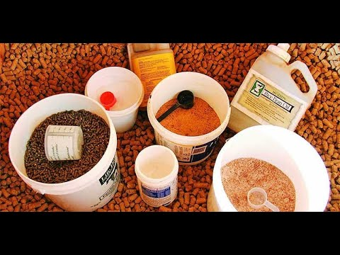 Top 3 Best Horse Supplements Reviews In 2019
