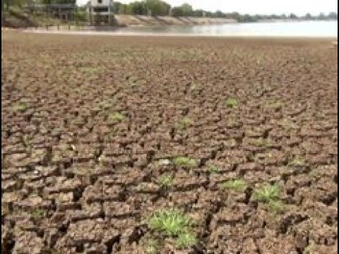 Severe drought destroys North Central agriculture