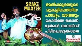 Cobra escapes from Vava Suresh's grasp | Snakemaster | Latest episode
