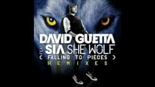 Play She Wolf (Falling to Pieces)