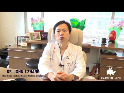 Dr Zhang on 3-Parent IVF or Nuclear Transfer VLOG