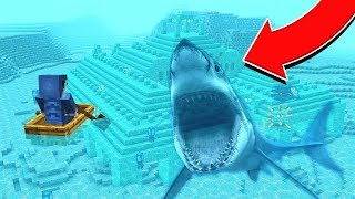 I GOT ATTACKED BY A SHARK! (LIVE FOOTAGE)