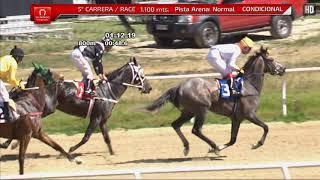 Vidéo de la course PMU PREMIO JORGE MONTT G.