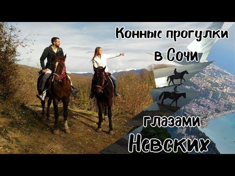 Конные прогулки🐴 в Сочи глазами Невских. Отдых в Сочи. Куда пойти в Сочи. Экскурсии в Сочи🐎.