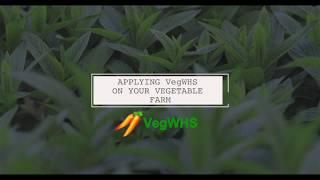 VegWHS -  Overview