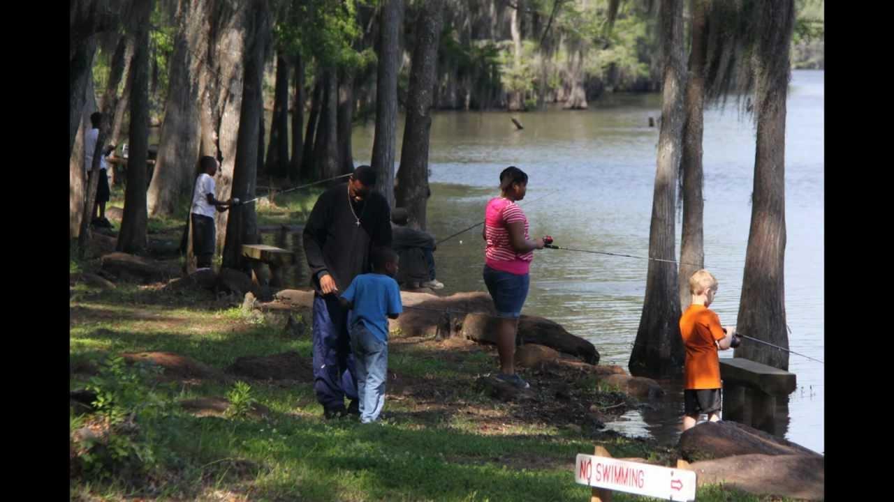Caddo lake fishing youtube for Caddo lake fishing report