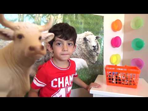 Thumbnail: Learn Animals for Children, Toddlers and Babies | Animals with Sound Kids Education