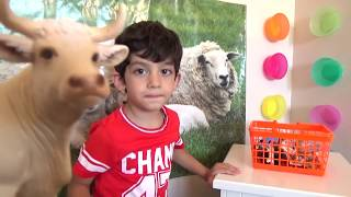 Learn Animals for Children, Toddlers and Babies | Animals with Sound Kids Education