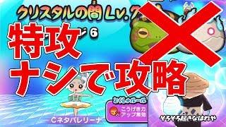 【妖怪ウォッチぷにぷに】特攻妖怪ナシでCネタバレリーナ攻略!  Yo-kai Watch thumbnail
