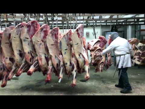 Brooklyn Wholesale Meat Market