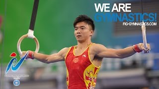 LIU Yao (CHN) – 2014 Artistic Worlds, Nanning (CHN) - Qualifications Rings