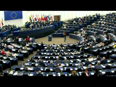 TTIP vote in European Parliament descends into chaos after p