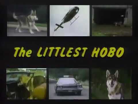 Download The Littlest Hobo Theme Song 'Maybe Tomorrow'