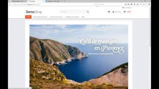 Shopware Theme editieren - TopBar oben entfernen
