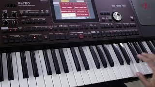 Korg - PA 700 - Indian Sounds
