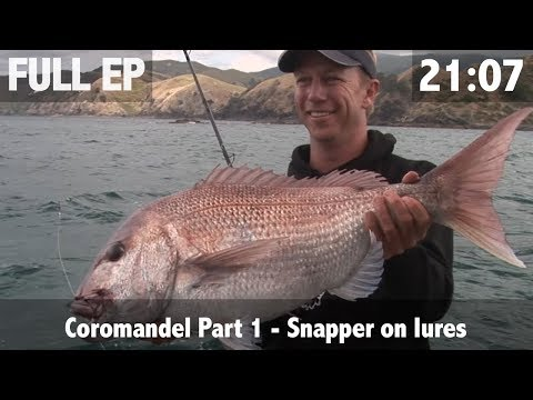 Competition Fishing Pt 1 - Snapper On Lures