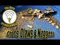 Crocs, Claws & Gold Nuggets!