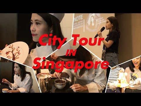 Vlog-08 My first time to Singapore. One of the best travel | Ms Yeah