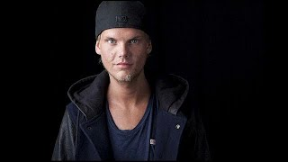 aviciis family say he could not go on any longer