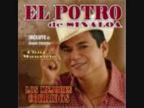 El Potro De Sinaloa - Alfredo Beltran (El Mochomo)