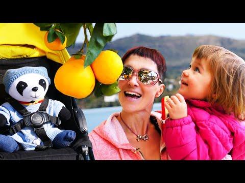 Бьянка и Маша Капуки гуляют в Турции с пандой. Привет, Бьянка!